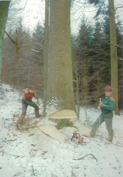 Waldarbeiter bearbeitet